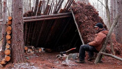 冬季丛林生存,搭建实木美庇护所,学会了我也要试试