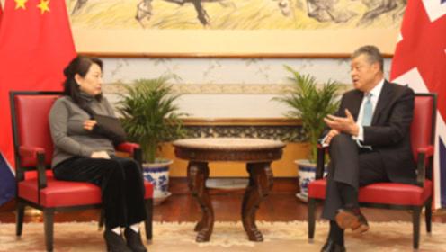中国驻英大使会见伦敦遇袭香港律政司司长:祖国是香港坚强后盾