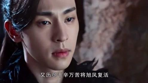 香蜜:素锦的春华秋实,为何从银色变为血色?凤凰心痛!