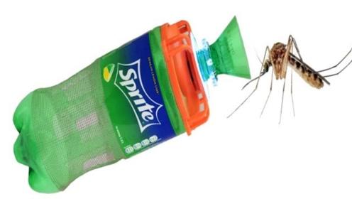 捕蚊器的简易制作!