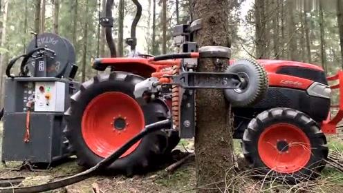 新型的树枝修剪机器,上下一来回,旁生树枝轻松剪除!