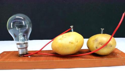 世界上最神奇的实验,用土豆就能发电,这是用了什么原理