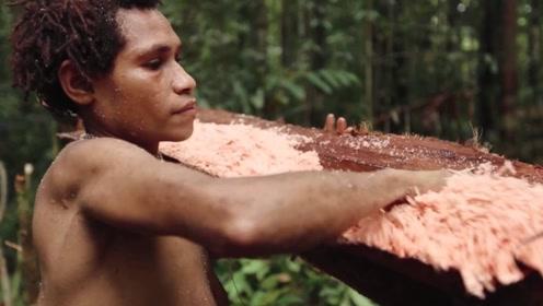 世界上最奇葩的树,明明是椰子树却产大米,成分和米一模一样