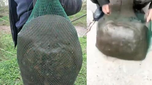 岳阳一老汉钓到重30多斤野生大甲鱼 过往群众啧啧称奇