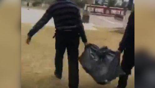 上海一高校抓捕流浪狗后套袋打死 校方:涉事保安已停职