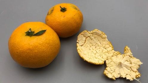 吃剩的橘子皮不要直接扔,把它泡在水里,家家户户用得到,看看吧
