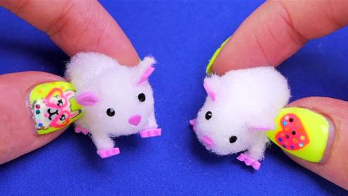 微世界DIY:迷你型仓鼠
