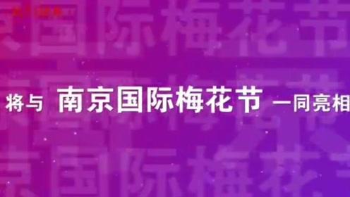"""""""二梅展""""明年2月相约 ,全国知名""""梅园""""首次齐聚南京"""