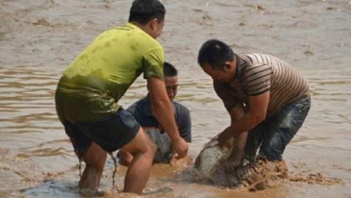 男子下河捉鱼, 突然感觉身体一阵刺痛, 站起来的那一刻崩溃了!