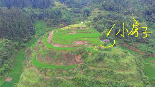 在大山里发现一个小木屋,门口就是农田,逃离现实的好地方