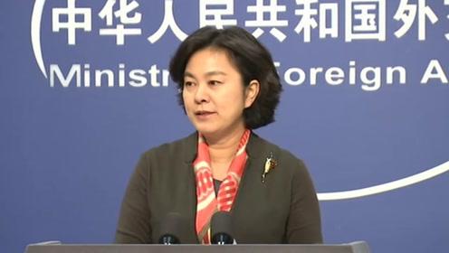 华春莹:中国块头很大,但我们信奉的是天下一家、和而不同