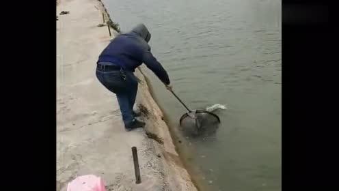 钓鱼时偶遇的,感觉这位钓友运气真好,看完忍不住羡慕!