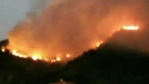 广东佛山山火已持续超24小时:上千人扑救,超500人被疏散