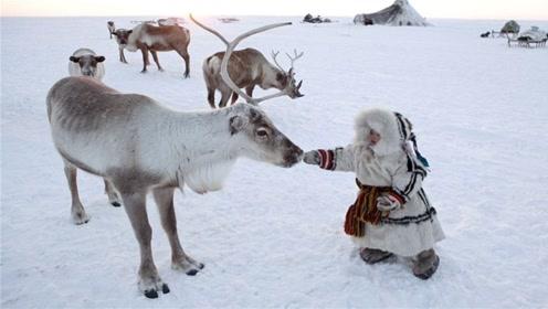 俄罗斯人在零下71度中生活,东北人看了都敬佩,不愧是战斗民族