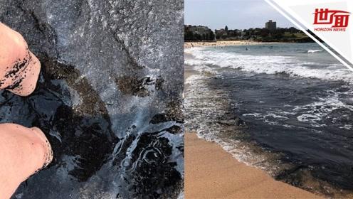 澳大利亚山火有多严重?悉尼的海滩已经被烟灰染成黑色