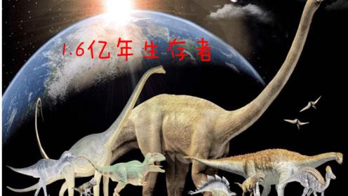 为什么生活了1.6亿年的恐龙没有创造文明,而人类却产生了?