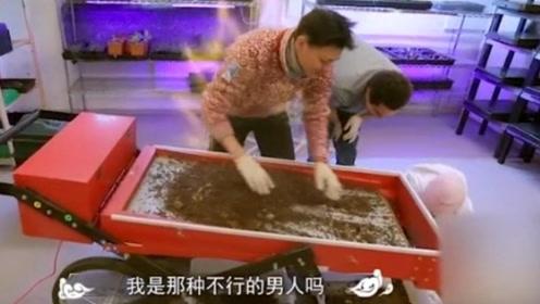 周冬雨黄子韬太招笑,对话内容歧义多,网友调侃:小S要找警察了