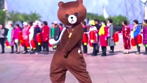 网红熊日常搞笑尬舞,同样是九年义务教育,为何你这么优秀