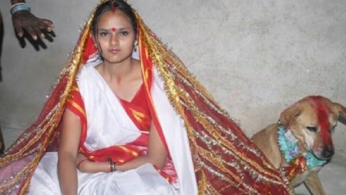 18岁少女嫁给一条大黄狗,全村欢天喜地,场面让人没眼看