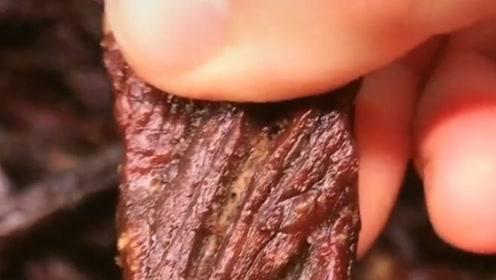 这才是真正的牛肉干,撕开的一刻,不爱吃肉的心动了!