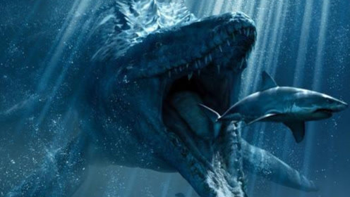 史前顶级猎杀者的正面交锋!沧龙与巨齿鲨,谁才是不败的王者?