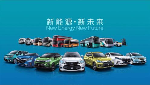 揭秘!国产车在新能源领域能否领先全球?