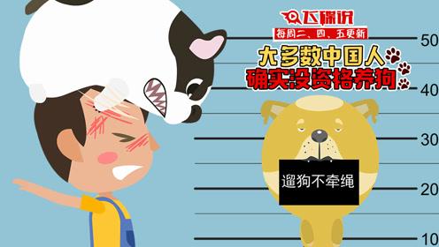 飞碟说:大多数中国人确实没资格养狗