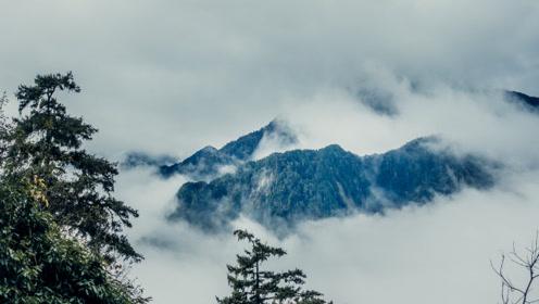 《行疆:环台湾岛》第6集:雾锁合欢