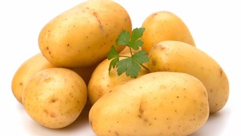 现在买土豆还是任性的随意挑?这些土豆的挑选方法学学吧!