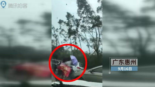 """台风""""山竹""""吹倒道路旁树木 砸伤过路两名行人"""