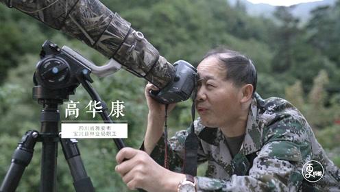"""野生大熊猫""""御用""""摄影师,36年拍下无数罕见照片,其中一张令人称奇"""