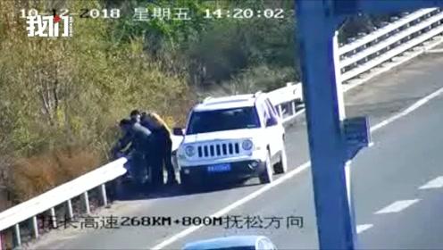 活鸡在车里闹腾男子高速上杀鸡被扣6分罚款200元