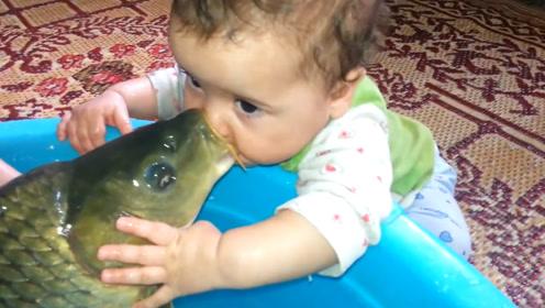 宝宝和鱼来了一次亲密接触,这深情一吻没谁了,爸妈笑趴了