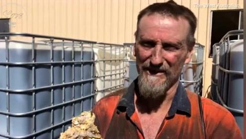 一夜暴富!废弃的矿洞内发现150公斤金块 价值1个亿