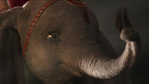 迪士尼真人电影《小飞象》北美正式预告片暖心曝光