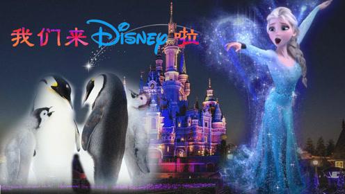 用迪士尼打开《王朝》,女王萌宠组合稀罕skr人!