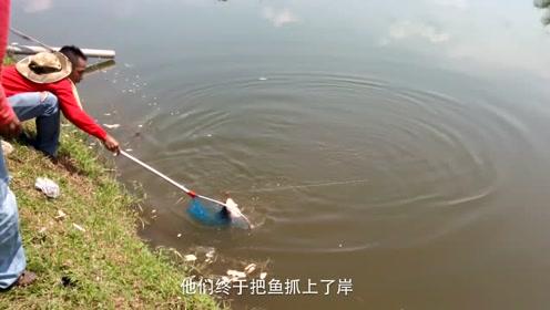 众人正安静的钓鱼,突然一人暴起疯狂拽竿,最后累瘫了