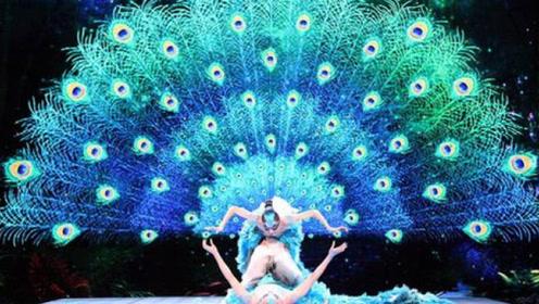 简直是脚尖上的语言,杨丽萍舞蹈《雀之恋》的孔雀开屏超棒_yo