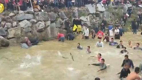 福建:上千人下水抓鱼 2000多斤鱼水中疯狂跳跃