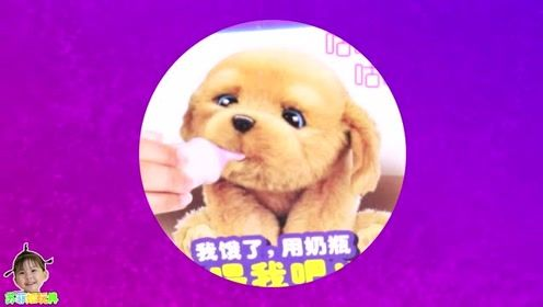 《苏菲娅玩具》玩具狗狗有哪些本领呢?