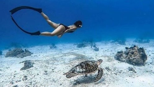 大海深处的美人鱼:美女上演梦幻海底漫步