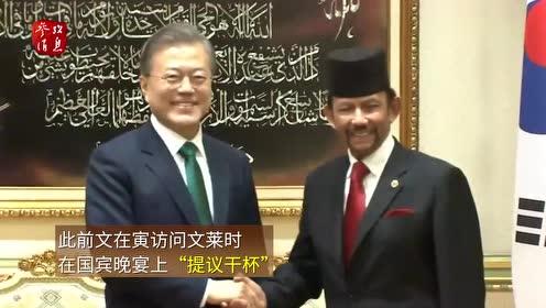 韩媒称文在寅访东南亚接连失礼:用印尼语和马来西亚总理打招呼
