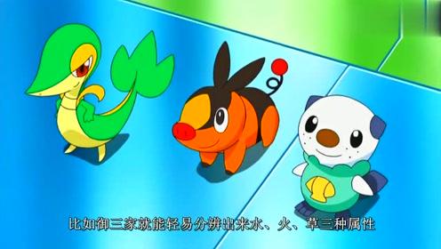 一眼看不出属性的神奇宝贝,暴鲤龙是飞行系,洛奇亚不是水系!