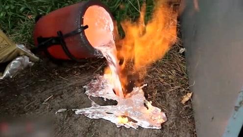 小伙把烧化的铝水倒入地黄蜂巢穴,挖出来就成了艺术品,真没想到