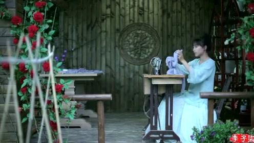 美食李子柒:诗一般的田园生活,乳鸭池塘水浅深,熟梅天气半阴晴!