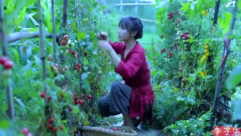 美食李子柒:诗一般的田园生活,俏丽若三春之桃,清素若九秋之菊!