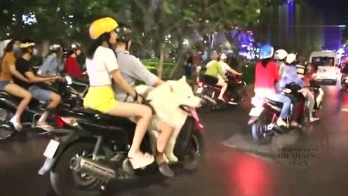 旁边的摩托车有些怪异 男主笑得那是一个皮笑肉开呀