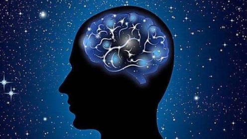 大脑到底会存多少东西,相当于多少g的内存?真的太厉害了!