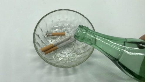 抽剩的香烟一个都别扔,用白酒泡一泡,全家人抢着用,快学学