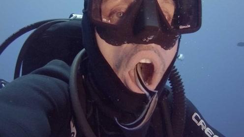 男子潜水时突然张开嘴巴,不一会两条小鱼游过来,直接钻进去了!